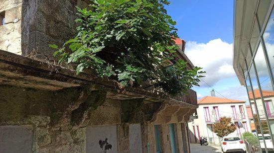 O CCVV aproba unha nova adquisición na rúa San Sebastián